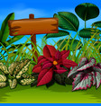 an nature wallpaper with wooden board and leave vector image vector image