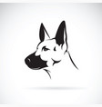 dog head german shepherd on white background vector image vector image