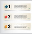 infographics set of three vector image vector image