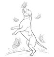 a children coloring bookpage a cute dancing dog vector image vector image