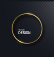 abstract golden circle shape vector image