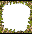 background with pistachio vector image