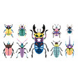 colorful beetles set vector image