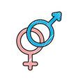 gender symbol of men and women on white background vector image vector image