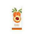 original fruit promo banner with sweet peach hand vector image