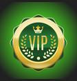 vip green golden label premium medal vector image vector image