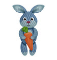 a funny knitted rabbit toy with carrot on white vector image