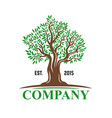 big tree with leaves emblem for company vector image