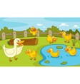 Ducks at the pond vector image vector image