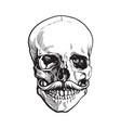 hand drawn human skull with curled upward hipster vector image vector image