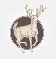 deer vintage engraved vector image