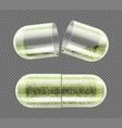 herb capsule nutritional supplement powder pills vector image vector image