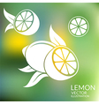 Lemon Abstract fruit on blurred background vector image vector image