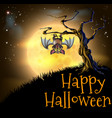 orange halloween vampire bat background vector image