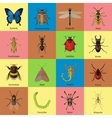 set insects flat style design icons butterfly vector image