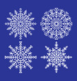 snowflakes collection closeup unique ice crystals vector image