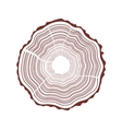 Tree rings background vector image