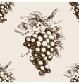 Bunch of grapes hand drawn seamless pattern vector image