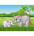 Cartoon elephant mother and calf bonding relation vector image vector image