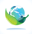earth in leaf vector image vector image