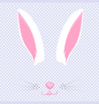 easter bunny ears and nose mask for carnival vector image vector image