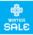 Winter Sale Blue Background vector image vector image