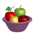 bowl with apples vector image vector image