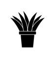 plant in vase vector image
