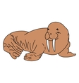 Detailed of a walrus vector image vector image