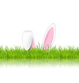 easter bunny ears in grass vector image vector image
