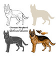 german shepherd dogs sketches vector image vector image