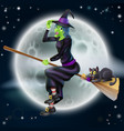 halloween witch 2013 e1 vector image
