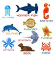 Marine animals colorful icons in flat style vector image vector image