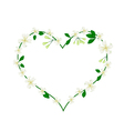 Mock Orange Flowers Flowers in A Heart Shape vector image vector image