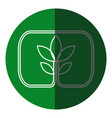 plant leaves natural environment symbol green icon vector image vector image