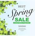 spring offer background vector image vector image