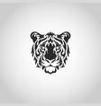 tiger logo icon design vector image
