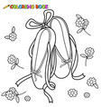 ballet shoes black and white coloring page vector image vector image