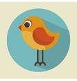 cute bird beautiful icon vector image