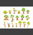 cute tree characters set funny humanized trees vector image vector image