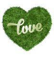 Love in grass vector image vector image