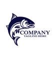 modern salmon logo vector image vector image