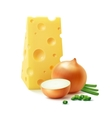 Piece of Swiss Cheese with Yellow and Green Onion vector image vector image