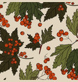 rowan colored red berry with green leaves patter vector image