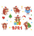 happy chinese new year cows and bulls vector image vector image