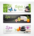 Realistic spa banners vector image vector image