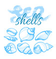 sea shells set vector image vector image