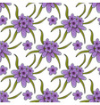 seamless pattern with lavender flowers vector image vector image