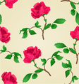 Seamless texture Red rose stem vector image vector image