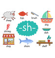 sh digraph with words educational poster for kids